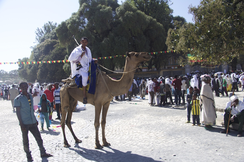 Maryam Tsion, Axum